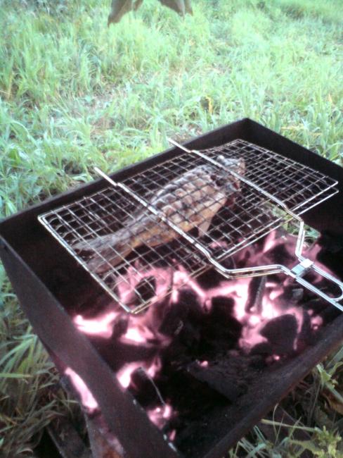Улов на огне