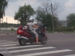 Вот такого необычного пассажира мы встретили на Можайке в прошлые выходные...