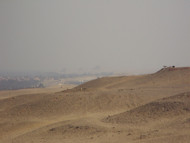 Египет. Каир. Пирамидальный горизонт