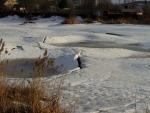 Пробуждение пруда по весне и ото льда