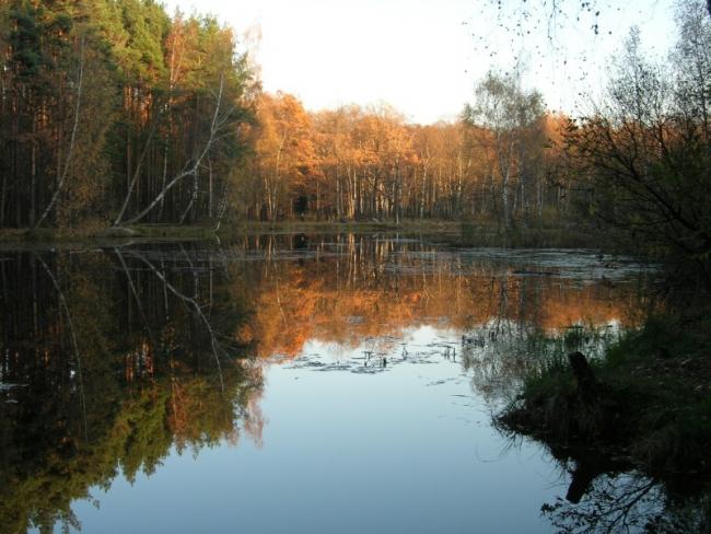 Осень смотрится в зеркало