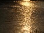 Наше озеро2