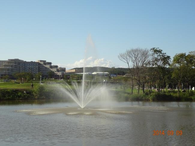 Дальневосточный федеральный университет - 2