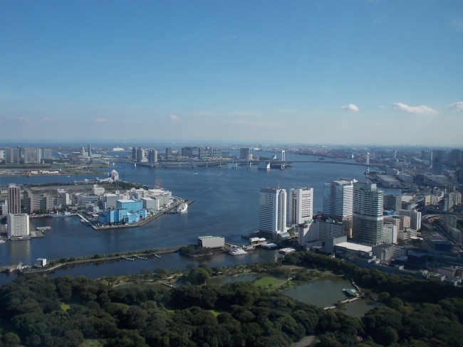 Токио, вид на Одайбу