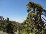 Горы Троодос -2