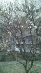 19.02.2016 Ташкент