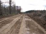 Вырубка леса под новую дорогу около Одинцово.