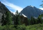 В горах растут кедры... и дома