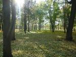 в парке 2