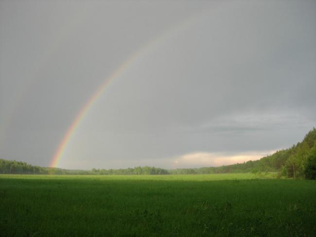 Радужное поле 2