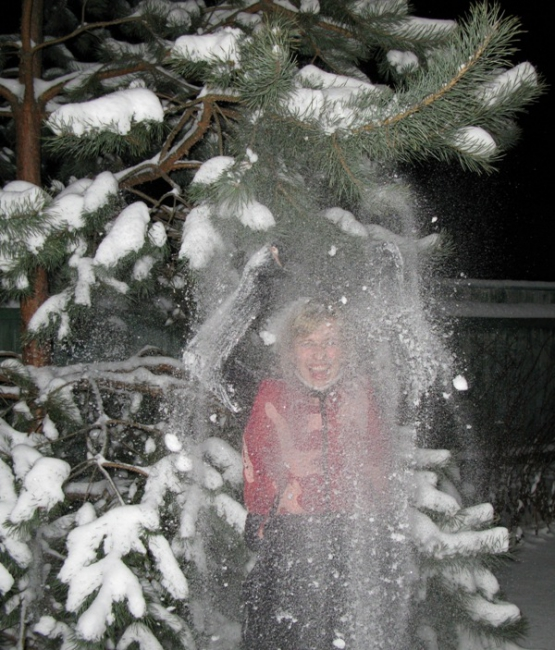В снегу под елкой