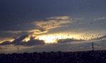 Работы Клары. Закат в каплях дождя