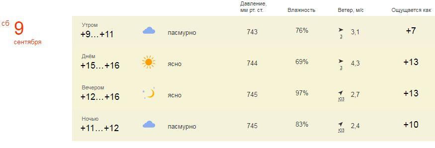 #погода #ВНИИССОК #ЛеснойГородок #ДеньПоселения #Яндекс