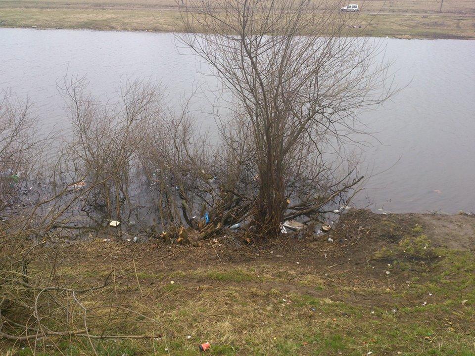 Порча пруда субботником в Дубках